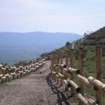Parco-archeologico-cosilinum10