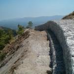 Parco-archeologico-cosilinum04