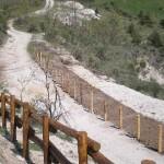Parco-archeologico-cosilinum06