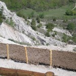 Parco-archeologico-cosilinum07