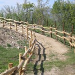 Parco-archeologico-cosilinum09